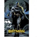Batman Poster + jetztbinichpleite.de.