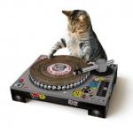 Geschenkideen und Gadgets finden - DJ Pult + Plattenspieler Katzen
