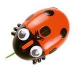 geschenk für ehemann gesucht - Marienkäfer USB Maus