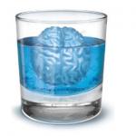 hilfe geschenkidee für freund + Gehirn Eiswürfelform