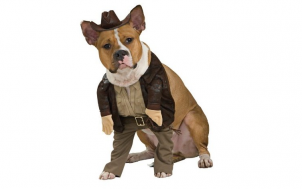 was soll ich verschenken - Hundekostüm Indiana Jones