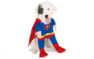 was soll ich verschenken - Superman Kostüm für Hunde